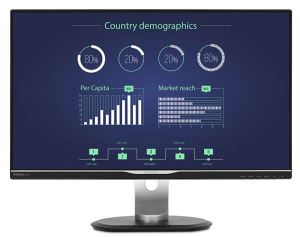 25'' Philips IPS 2560x1440 USB-C Monitor
